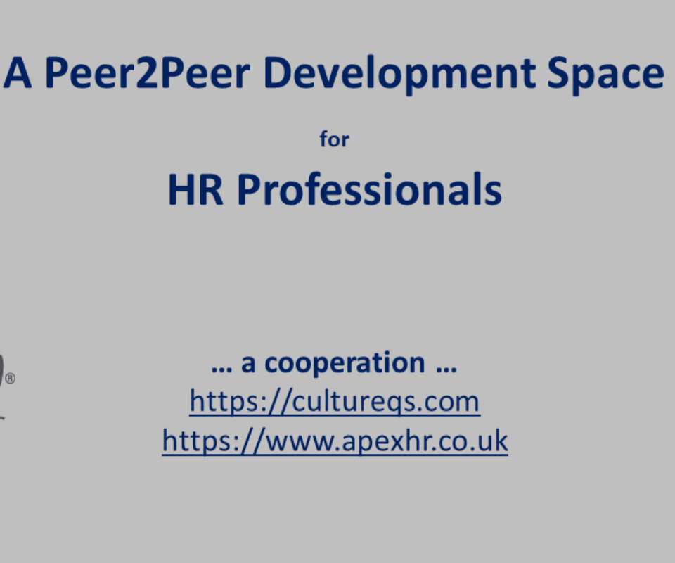 A Peer2Peer Development Space for HR Professionals